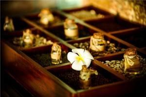 Palm_Garden_Beach_Resort_Hoi_An_herbal