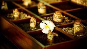 palm_garden_beach_resort_spa_hoi_an_herbal